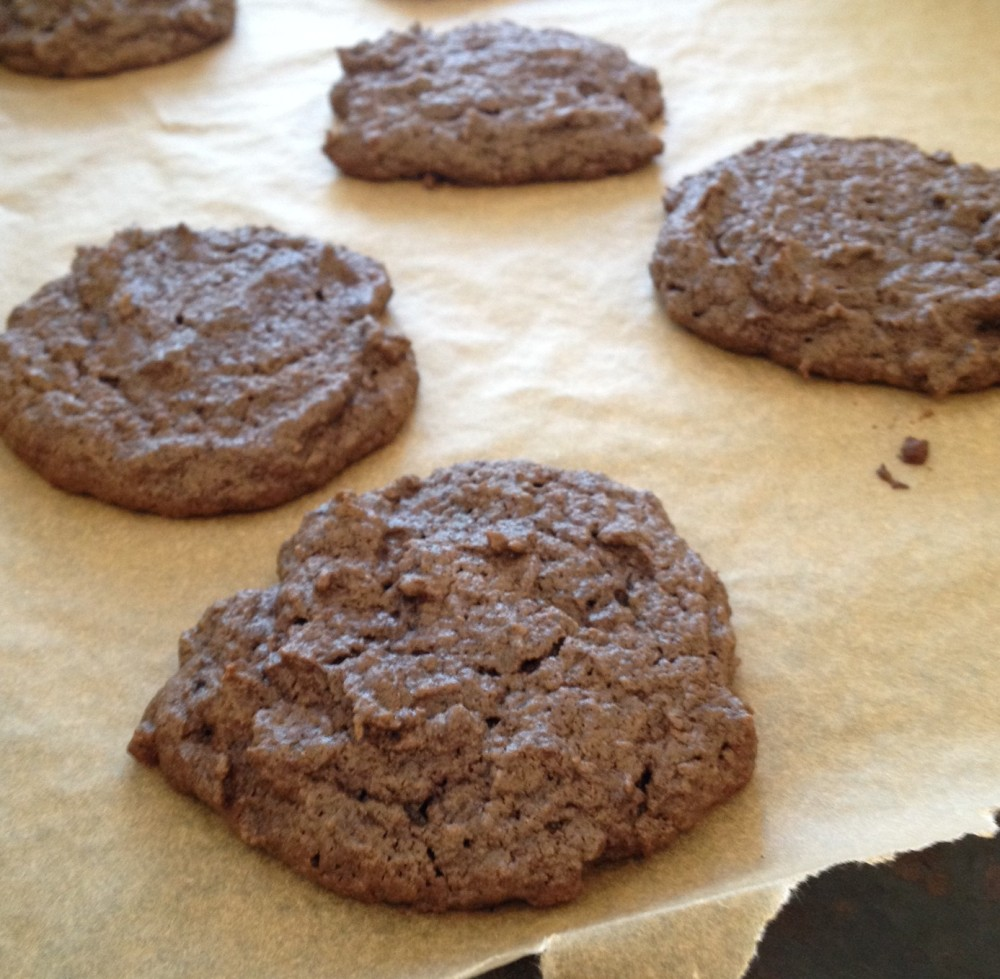 image of gluten free chocolate peanut butter cookies.